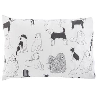 Vivi's pillows, because dogs